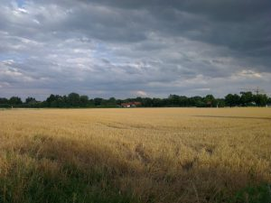 HTC ONE X - landscape