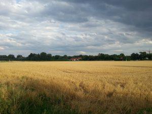 Samsung Galaxy S3 - Landschaft