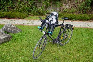 Thule RideAlong Mini Fahrrad Kindersitz
